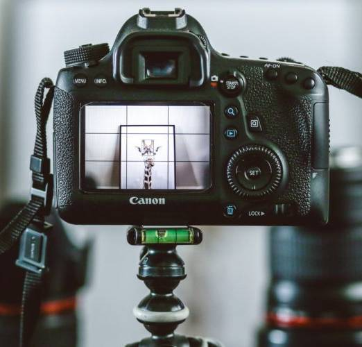 Best Camera For Photographing Artwork